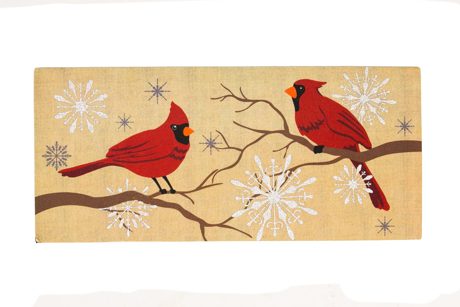 Decorative Feathers And Snow Sassafras Doormat