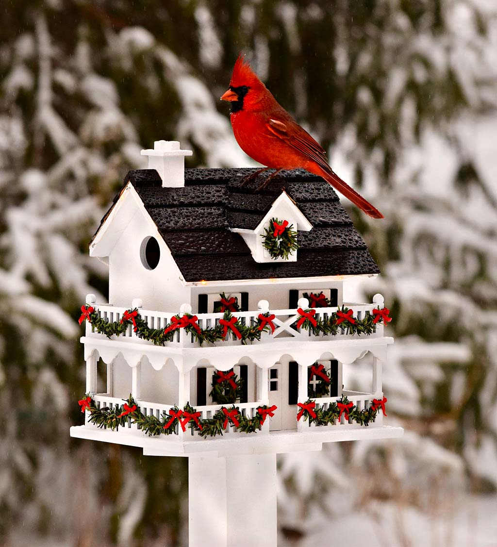 Lighted Holiday Colonial Cottage Birdhouse and Wood Pole Set (Home & Garden Decor) photo