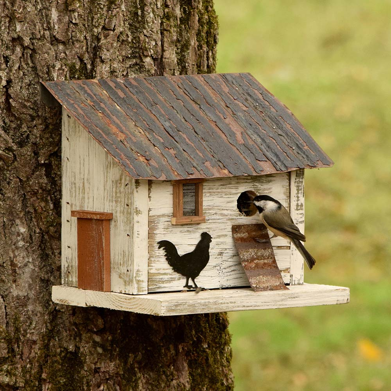 Chicken Coop Birdhouse