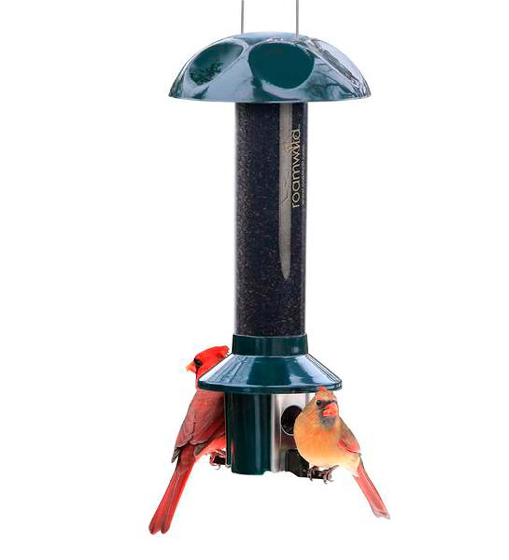 PestOff Pest Proof Nyjer/Thistle Finch Bird Feeder (Home & Garden Decor) photo