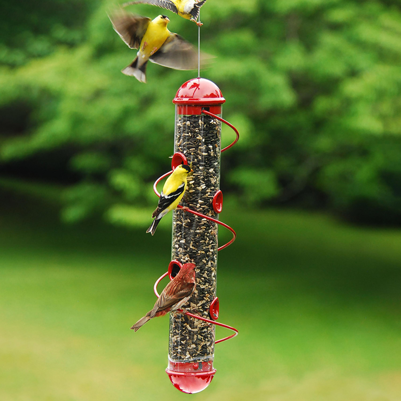 Red Spiral-Perch Finch Bird Feeder