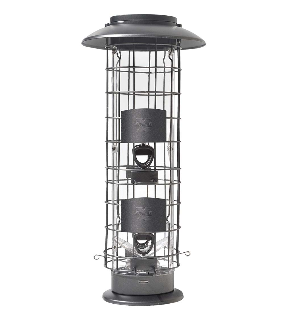 X4 Squirrel-Resistant Tube Bird Feeder (Home & Garden Decor) photo