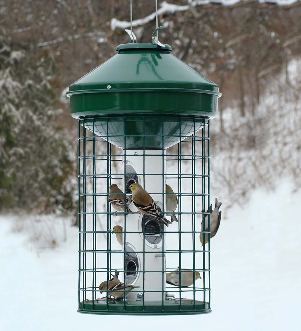 Squirrel-Resistant Caged Tube Bird Feeder (Home & Garden Decor) photo