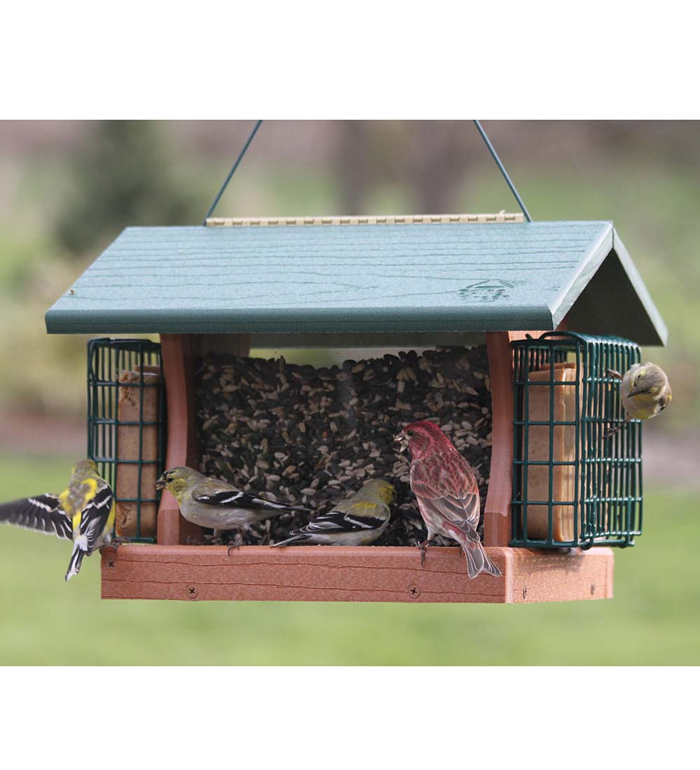 Large Going Green Bird Feeder with Suet Cages (Home & Garden Decor) photo