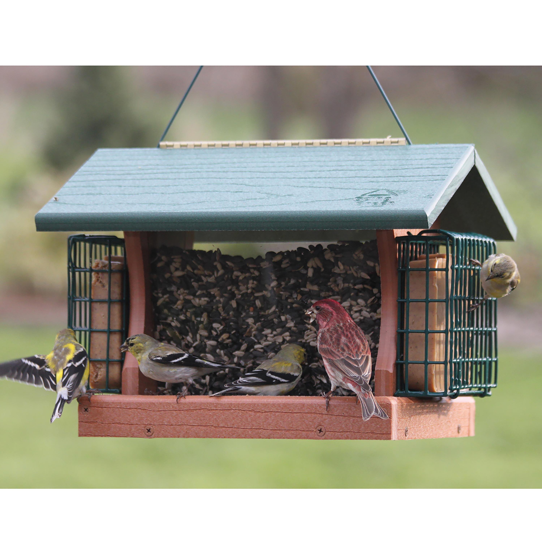 Large Going Green Bird Feeder with Suet Cages (715038308249 Home & Garden Decor) photo