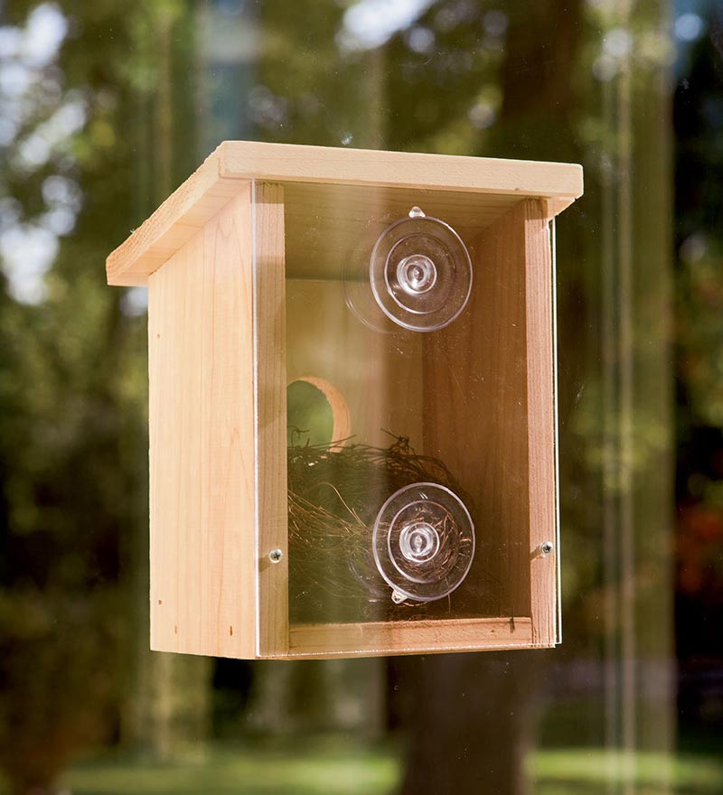 Wood Observation Birdhouse with Clear Back (645194781627 Toys & Games Toys Pretend Play) photo