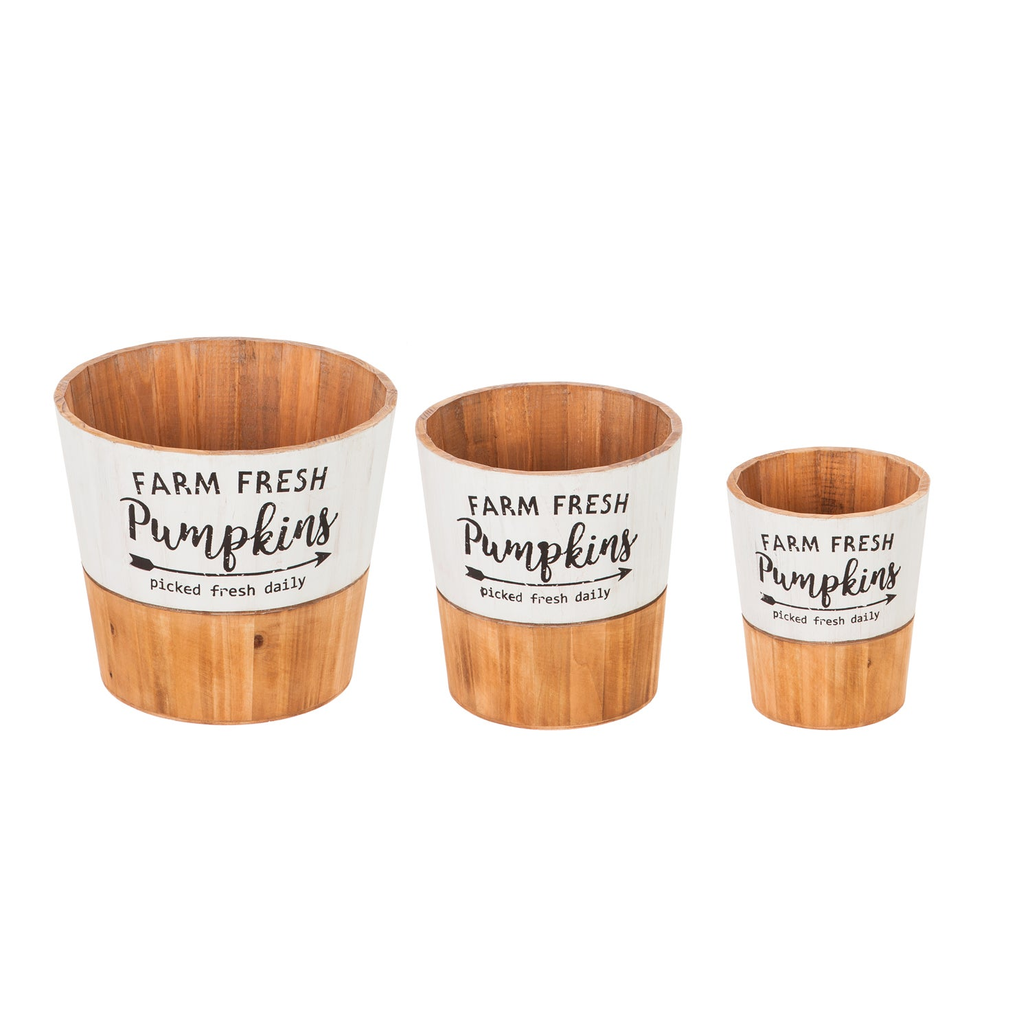 Fresh Picked Pumpkins Wooden Planters, Set of 3