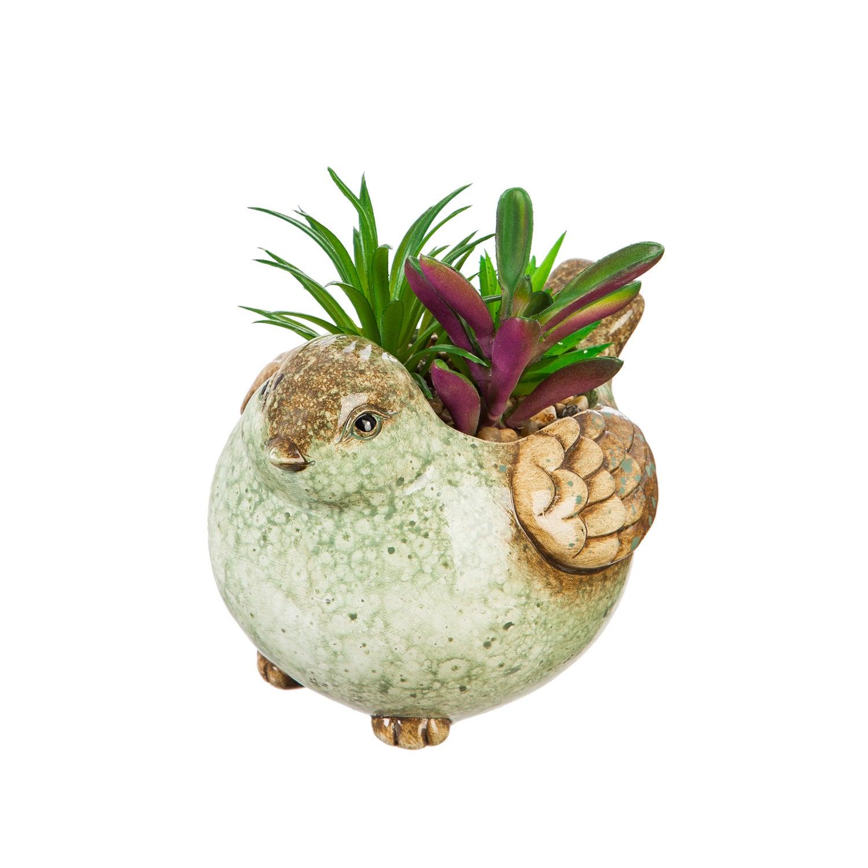 Ceramic Bird Planter with Succulent