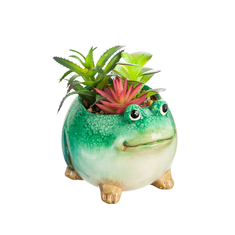 Ceramic Frog Planter with Succulent