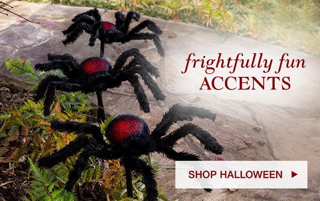 Frightfully fun accents. Shop Halloween.