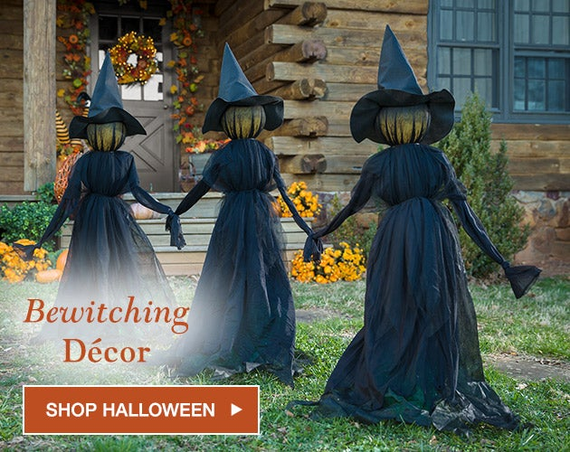 Bewitching Decor. Shop Halloween
