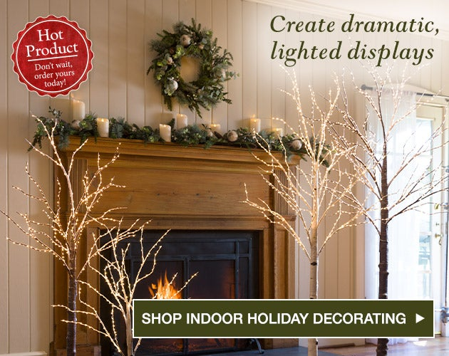 Create dramatic lighted displays. Shop Indoor Holiday Decorating.