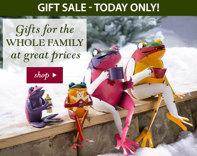 Gift Sale - Today only! Gifts for the whole family at great prices. SHOP