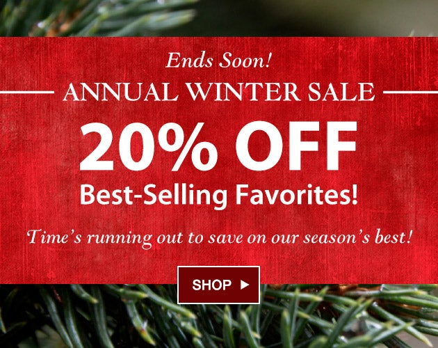Ends soon! Annual Winter Sale - 20% off Best-Selling Favorites! Time's running out to save on our best selling items. Shop the sale