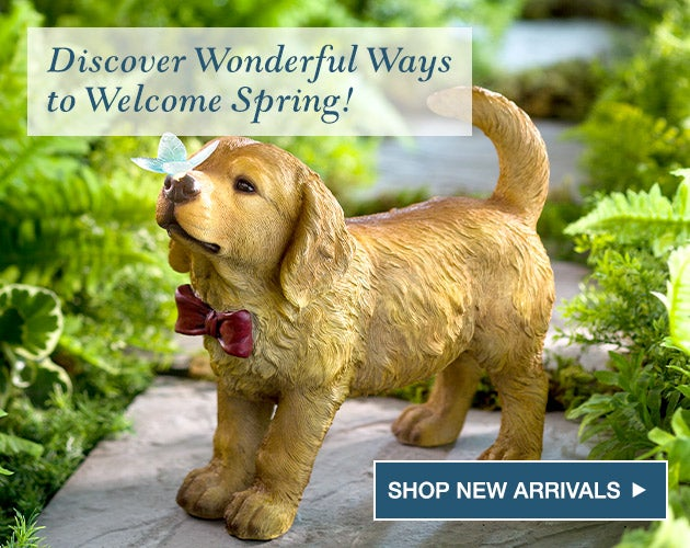 Discover wonderful new ways to welcome spring! Shop new arrivals.
