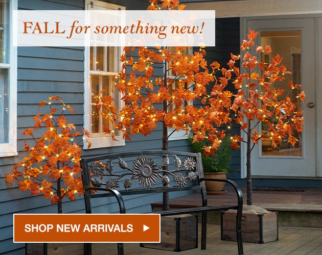 FALL for something new! Shop new arrivals.
