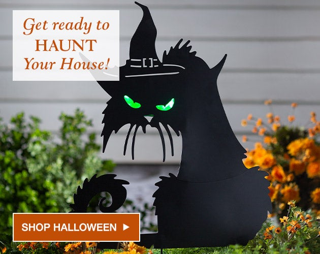 Get ready to haunt your house. Shop halloween.