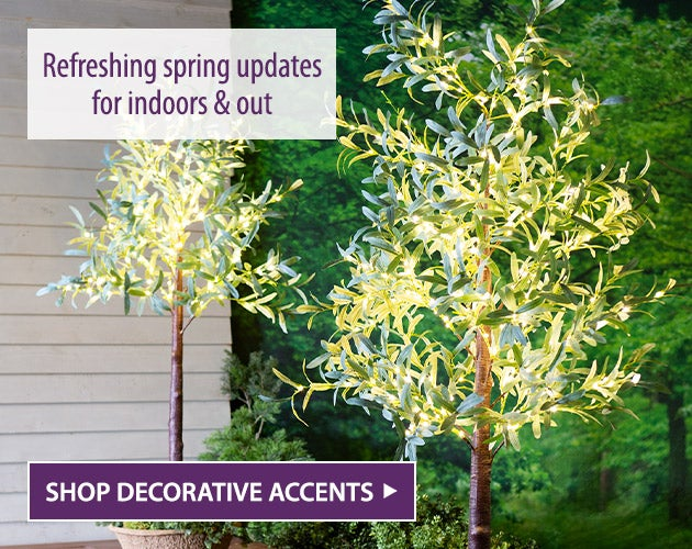 Refreshing spring updates for indoors and out. Shop Decorative Accents