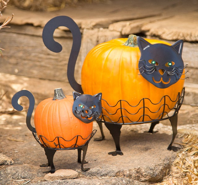 Black Cat Pumpkin Holders