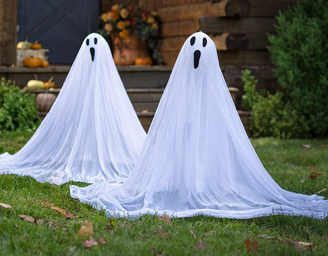 Ghost Stakes