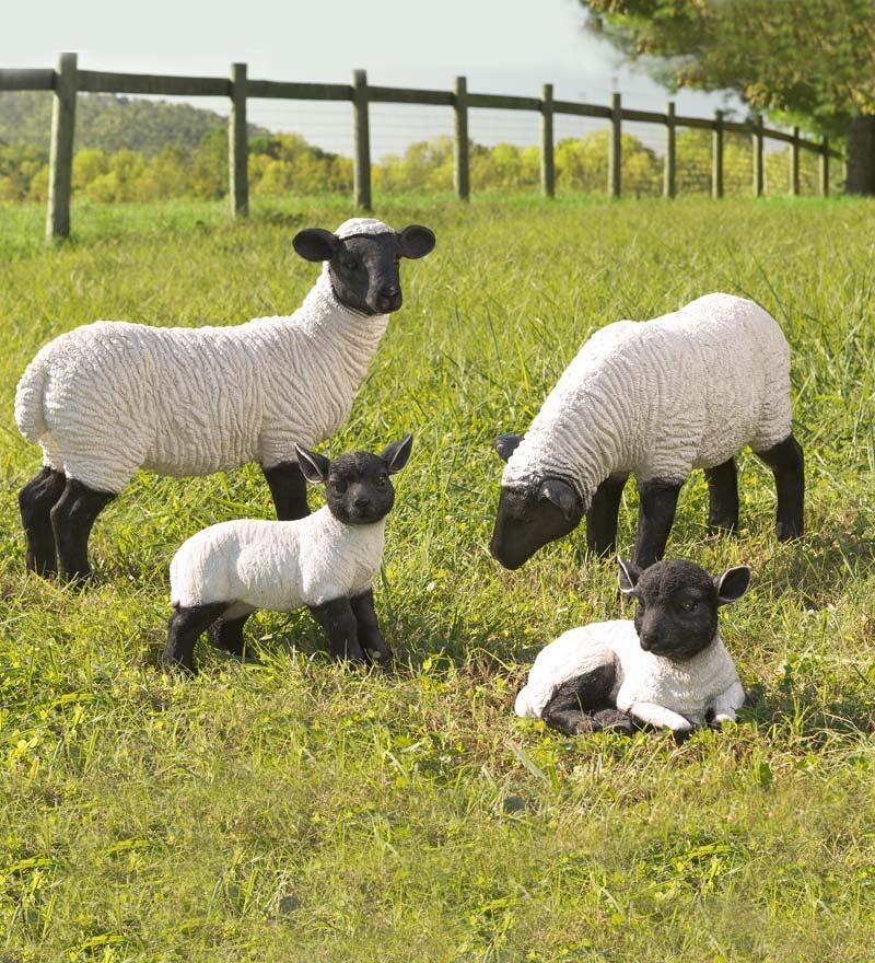 Suffolk Sheep Resin Garden Statues