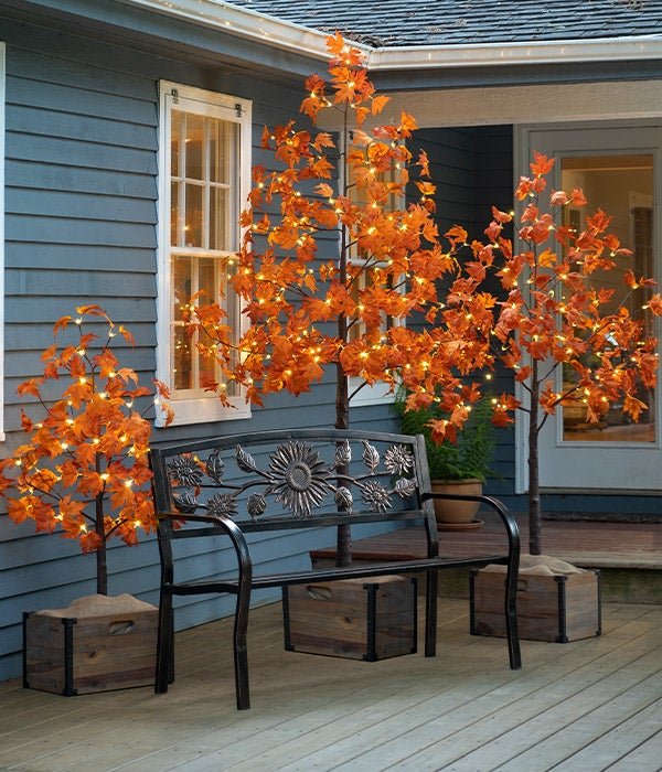 Indoor/Outdoor Electric Lighted Maple Trees shown outdoors