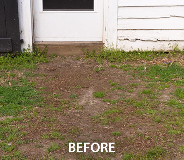 After Permanent Mulch