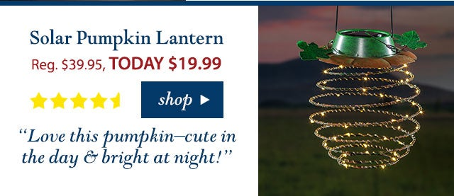 """Pumpkin Lantern Reg. $ 39.95 TODAY: $ 19.99 (50% OFF!) 4.8 stars """"Love this pumpkin–cute in the day & bright at night!"""" Buy Now>"""