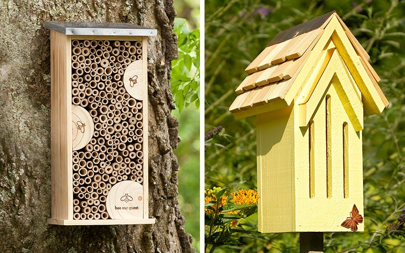 bee and bird houses